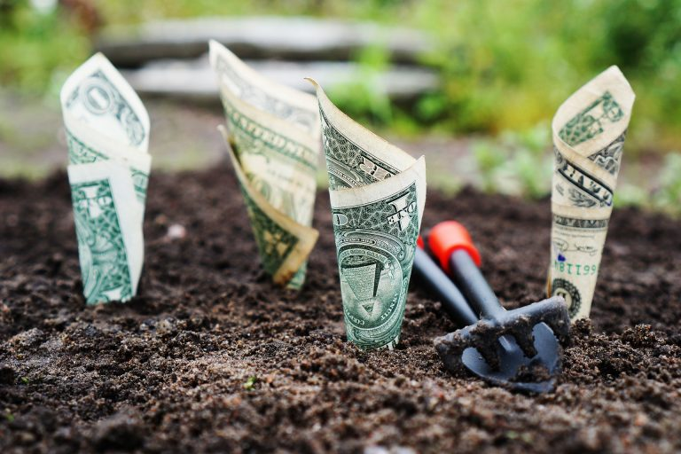 cultivate cashflow money grow fund roth ira 768x512
